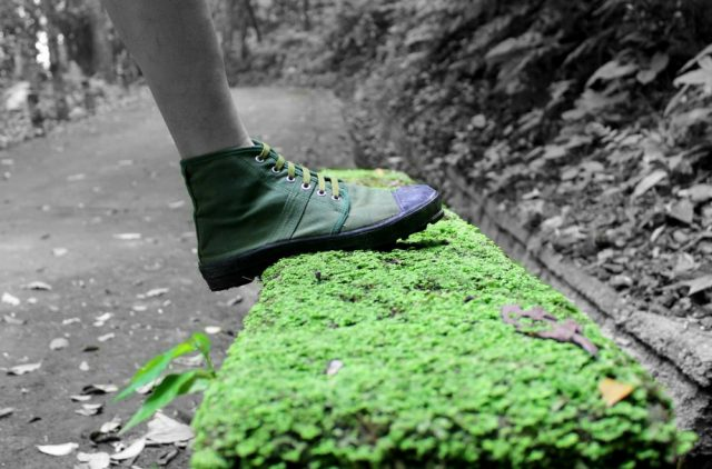 green-step-sustainability-blog-hero-banner